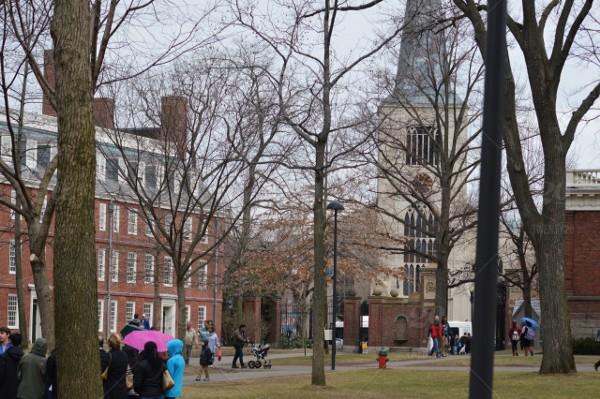 Experiência Acadêmica em Harvard